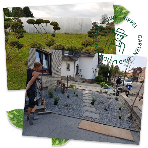 Uwe Trippel Garten- und Landschaftsbau